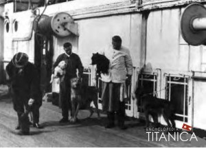 dogs-of-Titanic-2-300x215.jpg