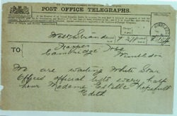 Stead Telegram
